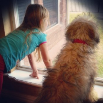 Child and Pup Window